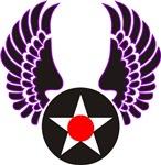 Air Force Raptor Wings