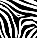 Zebra Gift Ideas
