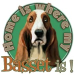 Home is where my Basset is
