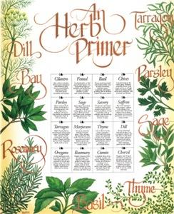 Herb Primer