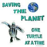 Sea Turtle Coasters