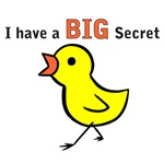 Chicks Big Secret Big Brother