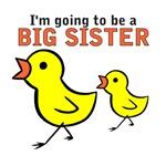 Chicks Big Secret Big Sister