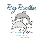 Dolphins Big Brother