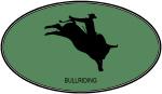 Bullriding (euro-green)