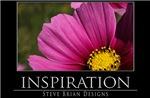 INSPIRATION17