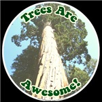 Awesome Trees
