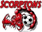 Scorpions Soccer Ball