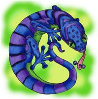 Gecko Wear!