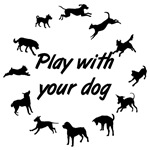 Play With Your Dog 3
