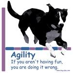 Have Fun in Agility