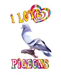 <b>I LOVE PIGEONS</b>