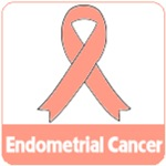 Endometrial Cancer Shirts & Gifts