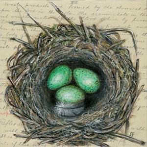 Crow's Nest I & II