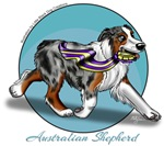 Australian Shepherd Blue Merle With Blue Backgrou