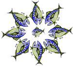 Retro Tuna Star Pattern Color
