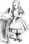 Alice & Drink Me Bottle