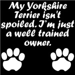 Well Trained Yorkshire Terrier Owner