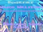 Bundefied Major Meltdown 07