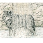 Cleansing Wolf