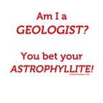 Bet Your Astrophyllite