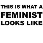 What a Feminist Looks Like.
