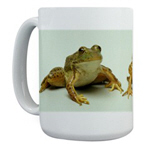 Frog & Toad Mugs