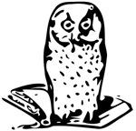 Owl Wisdom Symbol