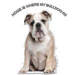 BullDog Home