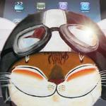 catmaSutra iPad Covers