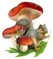 Mushroom Squirrel