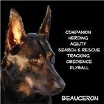Versatile Beauceron Dark Shirt