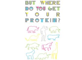 But Where Do You Get Your Protein?