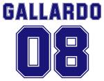 Gallardo 08