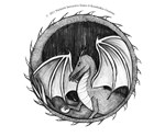 Dragon Shield 2