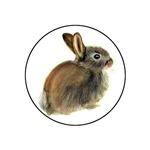 Rabbit Baby in Pastels