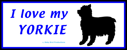 I LOVE MY DOG - YORKIE