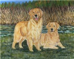 Golden Marsh Pair