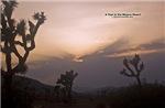 Mojave Calendar