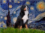 STARRY NIGHT<br>& Bernese Mountain Dog