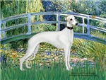 LILY POND BRIDGE<br>& White Whippet
