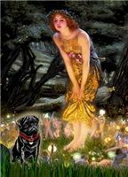 MIDSUMMER'S EVE<br>& Black Pug