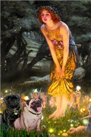 MIDSUMMER'S EVE<br>& 2 Pugs