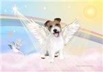 ANGEL IN CLOUDS <br>& Jack Russell Terrier