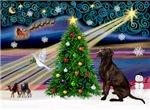 CHRISTMAS MAGIC<br>& Chocolate Labrador