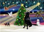 CHRISTMAS MAGIC<br>& Flat Coated Retriever