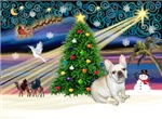 CHRISTMAS MAGIC<br>& French Bulldog