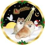 NIGHT FLIGHT<br>& 2 Pomeranians