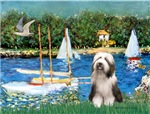 SAILBOATS<br>& Bearded Collie #1