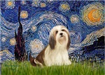 STARRY NIGHT<br>&Lhasa Apso #4